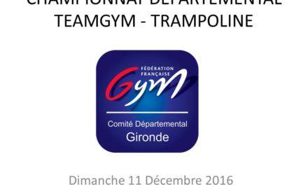 Championnat départemental Teamgym et Trampoline, Dimanche 15 Décembre 2016 à Pessac