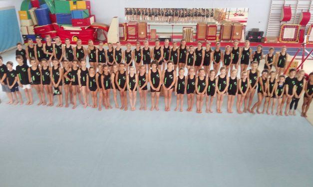 Séjour Summer Gymnastics