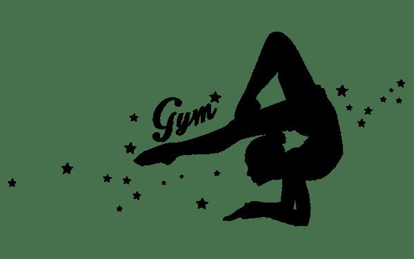 Résultats : Championnat de France Individuels GAM – GAF