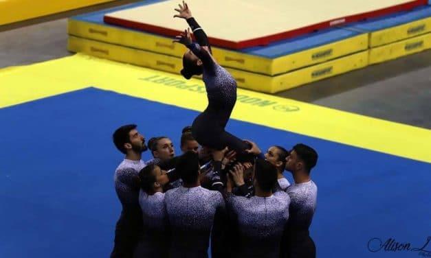 Clin d'œil aux excellents résultats des équipes Teamgym de Gironde !