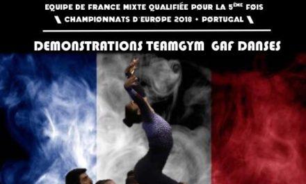 Événement : Gala Team Gym Talence