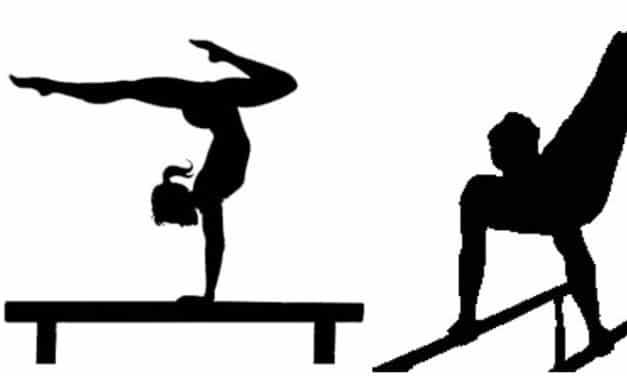 Julien Gallet, recherche un emploi d'entraîneur de Gymnastique sur la gironde
